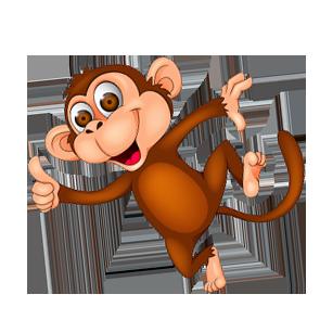 scimmia-guapa